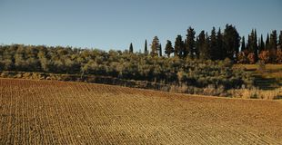 Landscape in the Tuscan Countryside in Chianti near Florence Royalty Free Stock Image