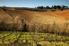 Landscape in the Tuscan Countryside in Chianti near Florence Stock Photo