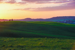 Landscape of tuscan countryside at sunset Royalty Free Stock Photos