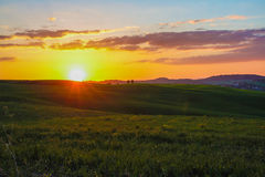 Landscape of tuscan countryside at sunset Royalty Free Stock Images