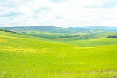 Landscape of tuscan countryside Stock Photos