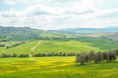 Landscape of tuscan countryside Stock Images