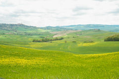 Landscape of tuscan countryside Royalty Free Stock Image