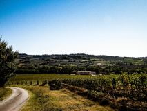 Landscape of the Tuscan vineyards, Chianti region, Italy. royalty free stock image