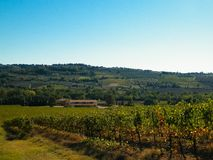 Landscape of the Tuscan vineyards, Chianti region, Italy. Nature and agriculture concept. Vacations in Italy. Copy space stock photos