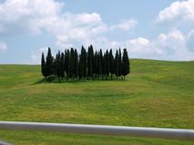 The landscape of the Tuscany. Royalty Free Stock Photo