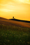 Landscape in Tuscany Royalty Free Stock Images