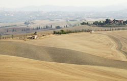 Landscape of tuscany Stock Images