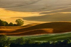 Landscape in Tuscany. At sunset in summer Stock Photography