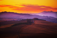 Landscape in Tuscany. At sunset in summer Royalty Free Stock Image