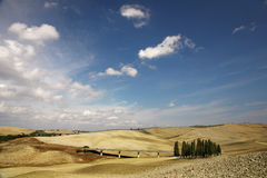 Landscape in Tuscany. Highway (famous forest from Windows theme Stock Images