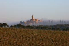 Landscape, Tuscany Royalty Free Stock Image