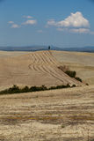 The landscape of the  Tuscany Royalty Free Stock Photography