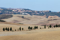 Landscape of Tuscany. Royalty Free Stock Image
