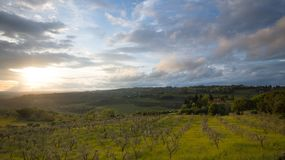 Sunset. Landscape of Tuscany: hills, farmhouses, olive trees, cypresses, vineyards. The hills of Chianti south of Florence. Landscape of Tuscany: hills royalty free stock photography