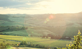 Landscape of Tuscany hills with lens flare Stock Photography