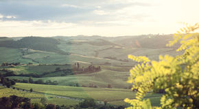 Landscape of Tuscany hills with lens flare Stock Photo
