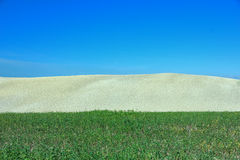 Landscape in Tuscany, Italy. (three colours Royalty Free Stock Image