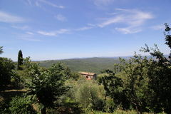 Landscape of Tuscany, Italy. A landscape of the Tuscany Hills against a blue sky with whispy clouds.  A giant Tuscan Cyprus tree is in the foreground Royalty Free Stock Image