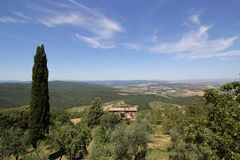 Landscape of Tuscany, Italy. A landscape of the Tuscany Hills against a blue sky with whispy clouds.  A giant Tuscan Cyprus tree is in the foreground Stock Photos