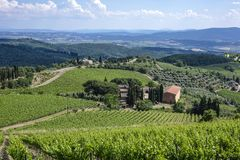 Landscape in Tuscany, Italy. Typical landscape with vineyards in Tuscany, Italy, Europe Stock Photo