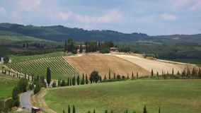 Landscape in Tuscany, Italy. Typical landscape with vineyards in Tuscany, Italy, Europe stock video