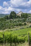 Landscape in Tuscany, Italy. Typical landscape with vineyards and olive trees in Tuscany, Italy, Europe Stock Photo