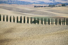 Landscape in Tuscany Royalty Free Stock Image