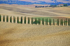 Landscape in Tuscany with luxury villa and cipress Royalty Free Stock Photography