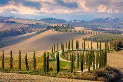 Landscape of Tuscany nature, rural Italy Royalty Free Stock Photos