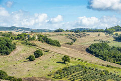 Landscape Tuscany near Volterra Royalty Free Stock Images
