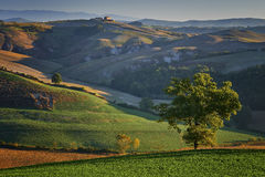 Landscape in tuscany,Rolling hills, countryside Royalty Free Stock Photo