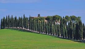 Landscape in Tuscany,San Gimignano,Tuscany Stock Photography