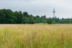 Landscape with the TV tower in Frankfurt. A juxtaposition of modern technology and natural landscape in urban area Royalty Free Stock Image
