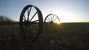 Landscape with two iron wheels and trees in wheat field, time lapse 4K. Landscape with two iron wheels and trees in young wheat field during sunrise in autumn stock footage