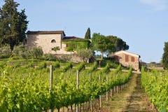 landscape typiska tuscan Arkivbild