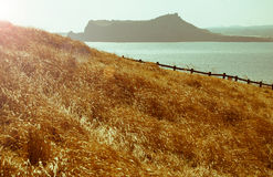 Landscape of Udo island in Jeju Island, South Korea Stock Photo