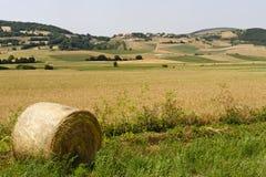 Landscape in Umbria near Foligno Stock Photo