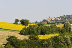 Landscape in Umbria near Todi Royalty Free Stock Photo