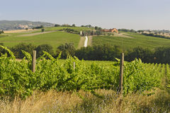Landscape in Umbria near Todi Stock Photography