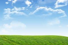 Landscape under blue sky Royalty Free Stock Images