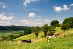 Landscape Unterbodnitz Royalty Free Stock Image