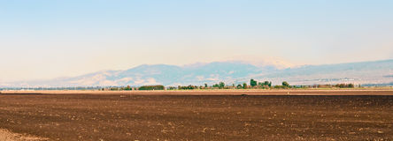 Landscape of the Upper Galilee.  Israel. Royalty Free Stock Image