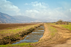 Landscape of the Upper Galilee.  Israel. Stock Photo