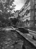 Landscape Urban in the city Abandoned building  flowers Noir Royalty Free Stock Photos