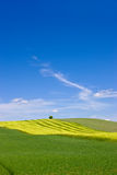 Landscape - useful as background Royalty Free Stock Image