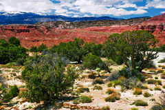Landscape of Utah Royalty Free Stock Images