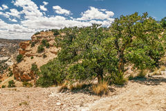 Landscape of Utah state Royalty Free Stock Image