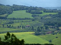 The landscape of the Val d'Orcia. Stock Photography