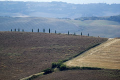 Landscape of val d orcia Royalty Free Stock Photography